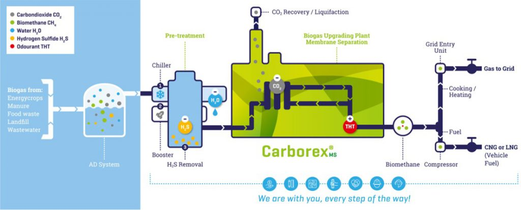 biogas upgrading pfd using membrane separation technology, a product description of carborex ms